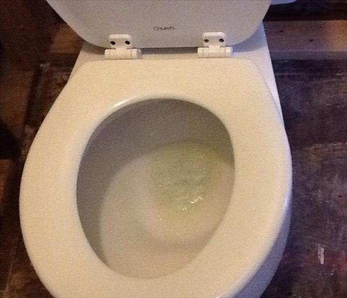 Sewage Backup Leaves Disgusting Toilet After