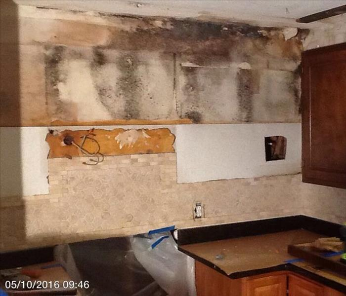 Worcester, Massachusetts Home Riddled with Mold