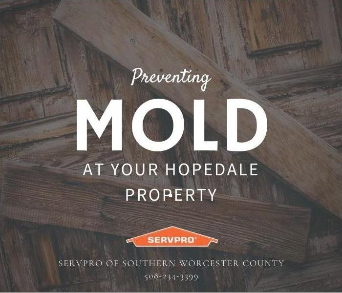 Preventing mold at your Hopedale property
