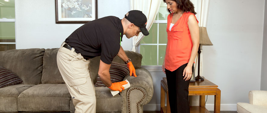 Uxbridge, MA carpet upholstery cleaning